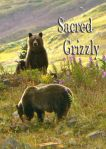 Sacred Grizzly dvd